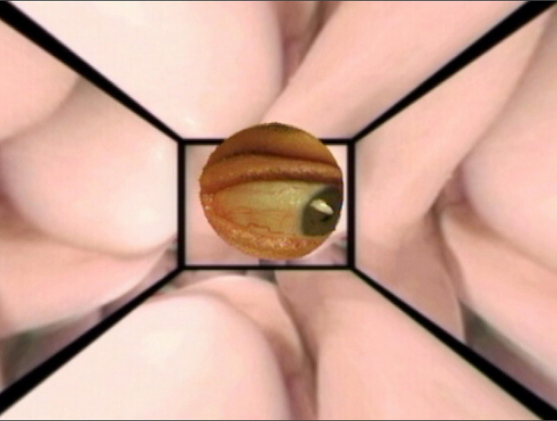 Porn Peeping Tom 65